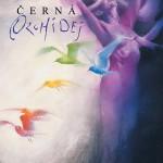 cerna_orchidej_obalka