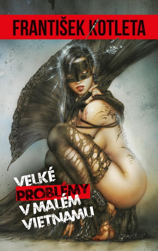 Kotleta_Velke-problemy